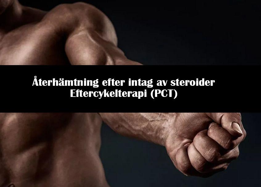 Återhämtning efter intag av steroider Eftercykelterapi (PCT)
