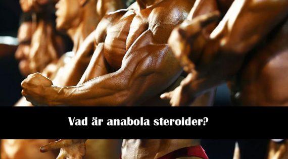 Vad är anabola steroider?